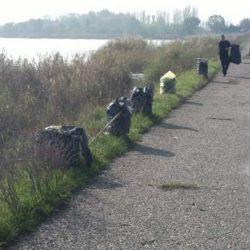 Cišćenje obale 3 i 4 sektora Palićkog jezera
