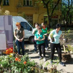 Besplatne sadnice za Dan planete Zemlje
