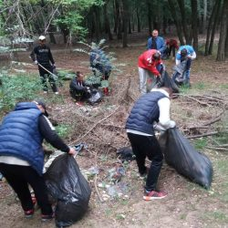 """Zeleni Subotice uklonili 125 m3 otpada i uspešno završili projekat """"Zaštitimo i očistimo Kelebijsku šumu"""""""